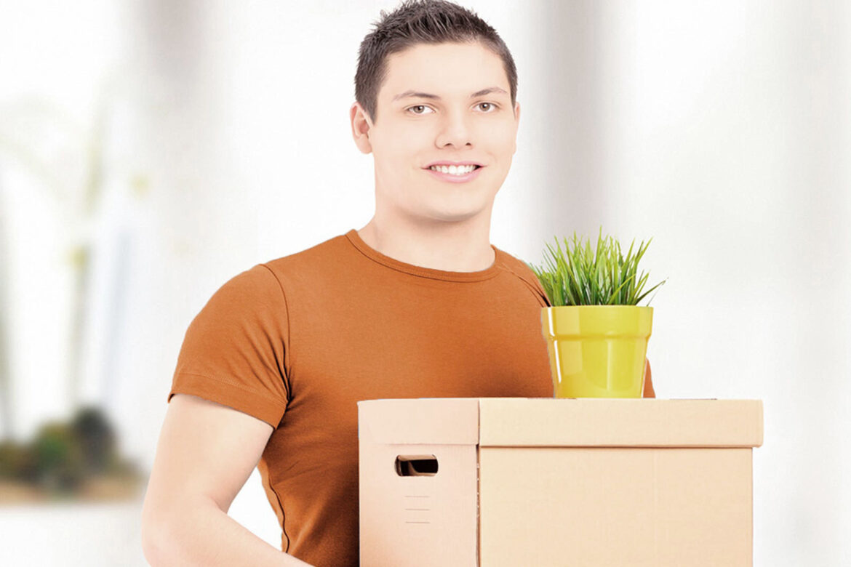 Перевозка комнатных растений на дачу